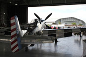 North American P-51 'Mustang' - Fragile but Agile