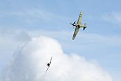 Hurricane Mk IIa und Spitfire MkIa am Himmel über Duxford