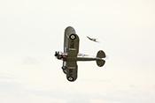 Gloster Gladiator K7985 (Baujahr 1938) der RAF-Squadron Nr. 73 im Luftkampf