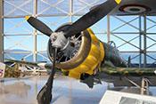 Sternmotor und Dreiblatt-Luftschraube der Macchi C200