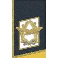 Kragenspiegel: Generalfeldmarschall