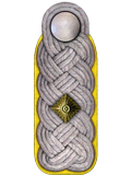 Schulterstück: Oberstleutnant